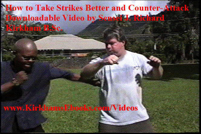 Taking Strikes Better 4 Self-Defense Screenshot 3