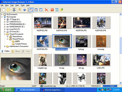 Internet Image Browser Screenshot
