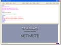 NetWrite 1