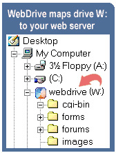 WebDrive Screenshot 2