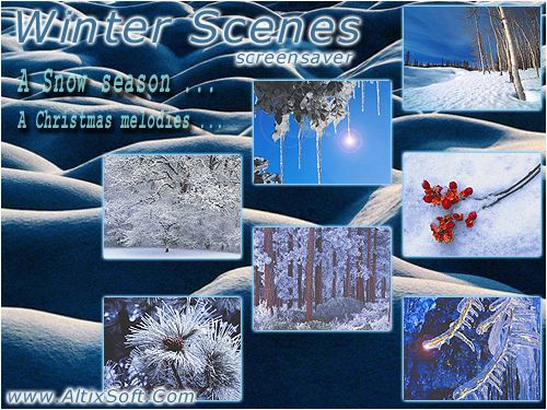 Winter Scenes Screensaver Screenshot