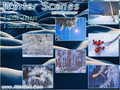 Winter Scenes Screensaver 1