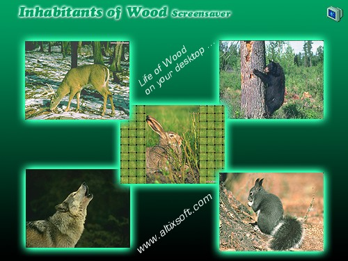 Inhabitants of Wood Screensaver Screenshot