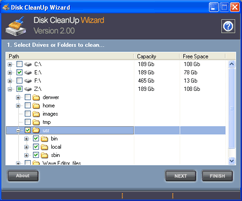 Disk CleanUp Wizard Screenshot