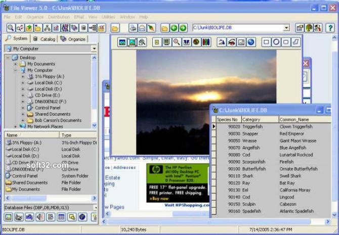 File Viewer Screenshot 2