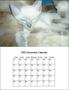 Calendars Software 1