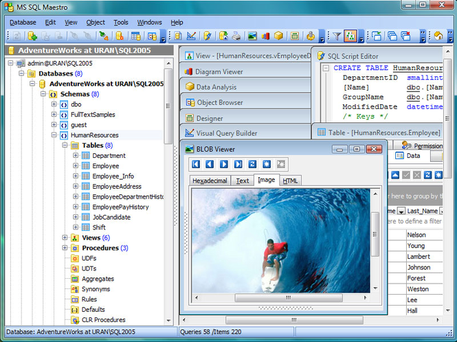 MS SQL Maestro Screenshot