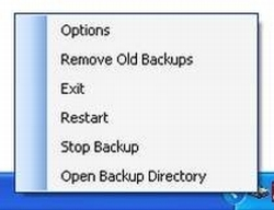 Caldsoft Auto Backup Screenshot 2
