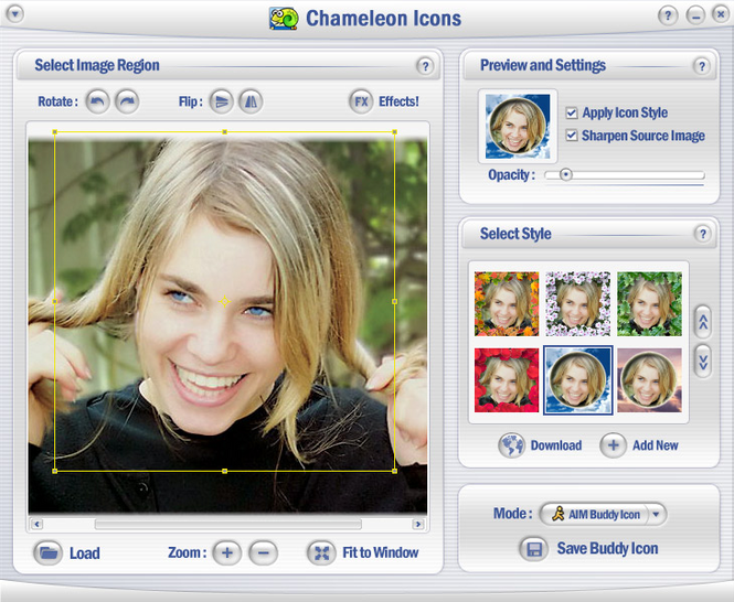 Chameleon Icons Screenshot 1
