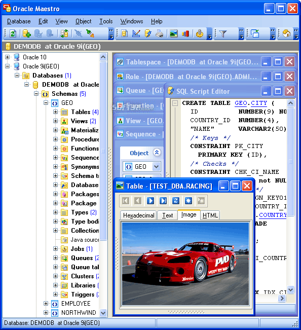 Oracle Maestro Screenshot 2