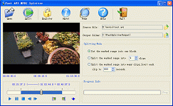 Fast AVI MPEG Splitter Screenshot