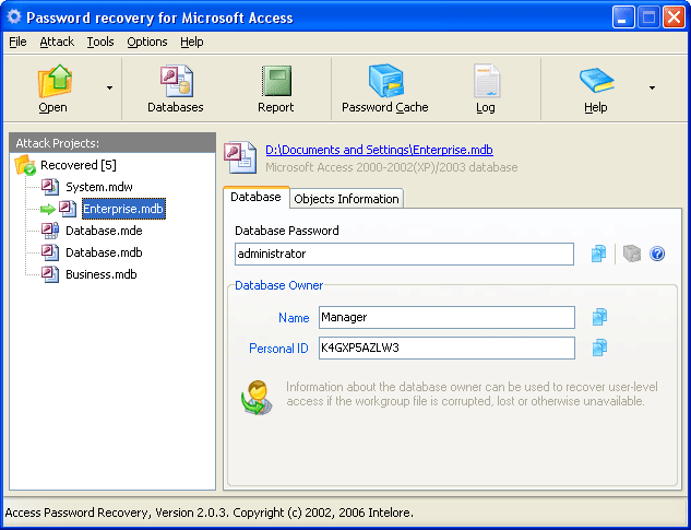 Access Password Recovery Pro Screenshot 1