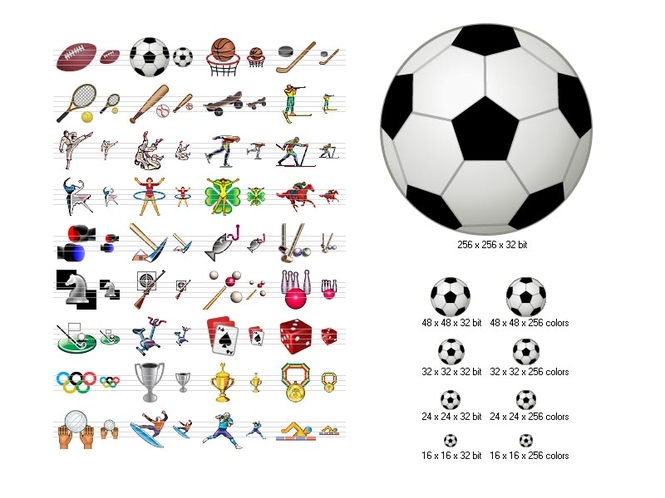 Sport Icons Screenshot