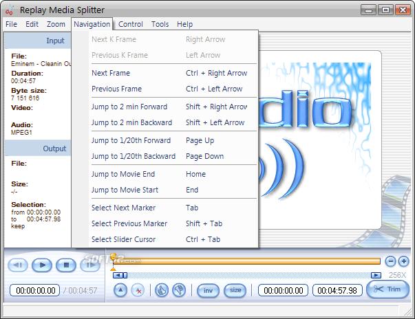 Replay Media Splitter Screenshot 3