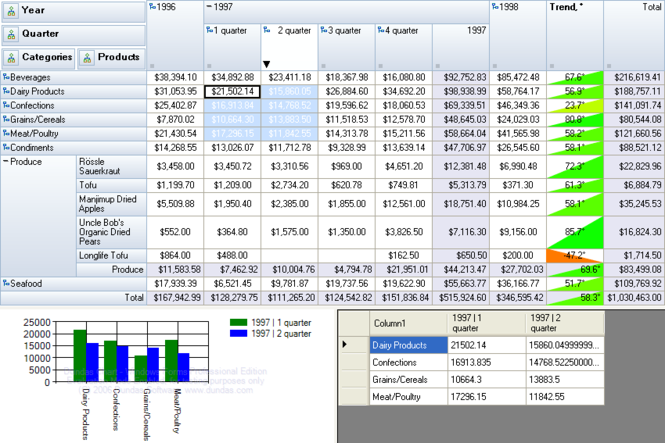 RadarCube OLAP Grid Windows Forms Desktop Screenshot 1