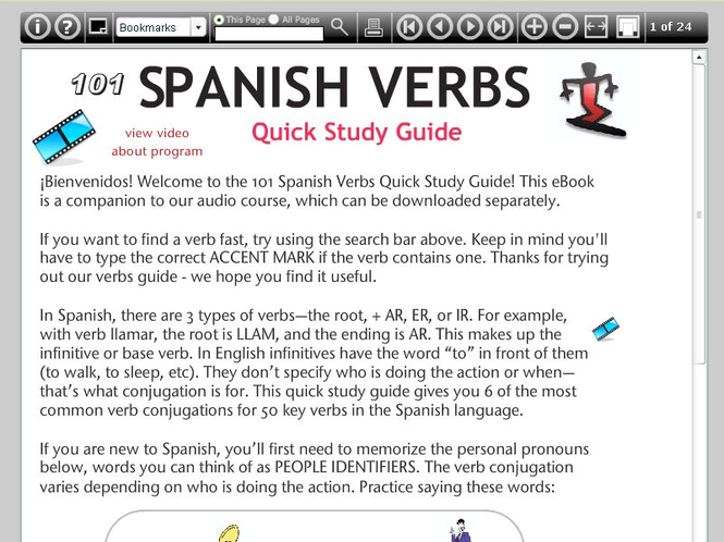 101 Spanish Verbs Quick Study Guide Screenshot 1