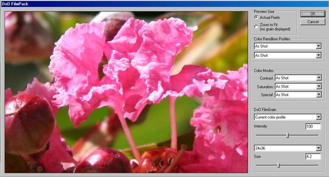 DxO FilmPack Screenshot 1