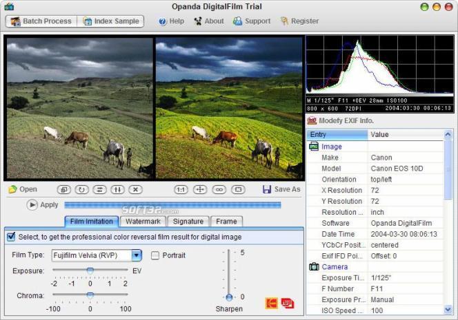 Opanda DigitalFilm Screenshot 2