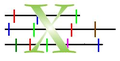 Cut 1D X 1