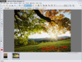 MAGIX Xtreme Photo Designer 2