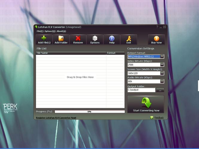 LetsFun FLV Converter Screenshot