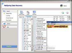 Netspring Data Recovery Screenshot