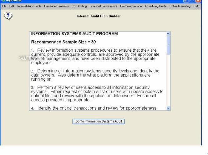 Small Business Internal Audit Screenshot 2