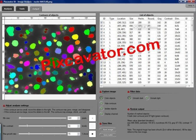 Pixcavator Image Analysis Software Screenshot 3