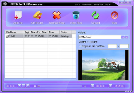 MPEG To FLV Converter Screenshot 2