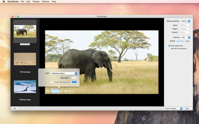 Quickscale Screenshot 3