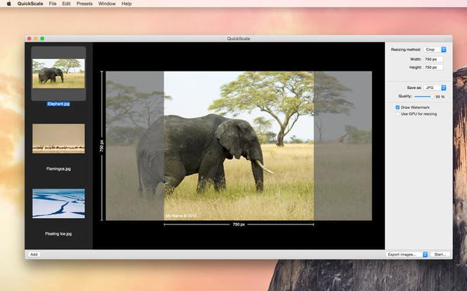 Quickscale Screenshot 2