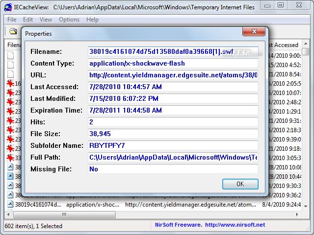 IECacheView Screenshot 4
