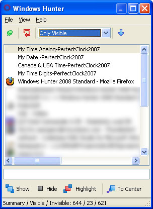 Windows Hunter 2008 Professional Screenshot