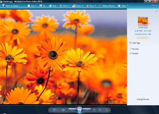 Windows Live Photo Gallery Screenshot