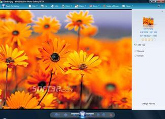 Windows Live Photo Gallery Screenshot 2