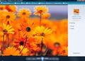 Windows Live Photo Gallery 1
