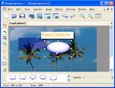 EasyCapture Screenshot 1