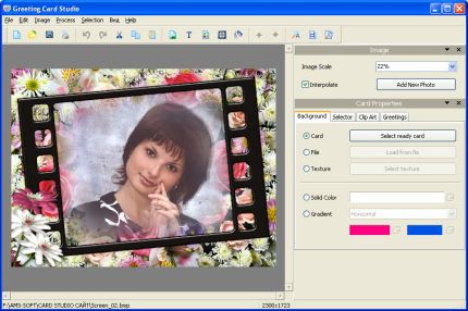 AMS Software Greeting Card Studio Screenshot