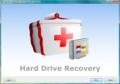 Mareew Hard Drive Recovery 1