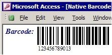 MS Access Barcode Integration Kit Screenshot