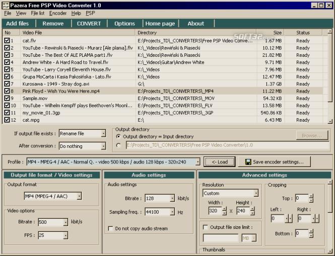 Pazera Free PSP Video Converter Screenshot 2