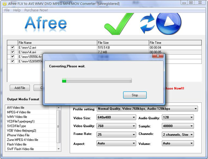 Afree FLV to AVI WMV DVD MPEG Converter Screenshot