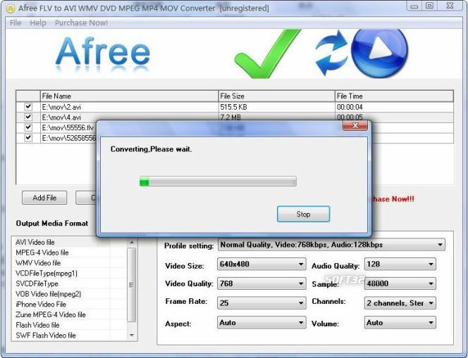 Afree FLV to AVI WMV DVD MPEG Converter Screenshot 2