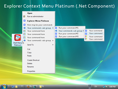 Explorer Context Menu Platinum (.Net Component) Screenshot