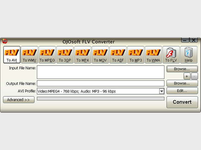 OJOsoft FLV Converter Screenshot
