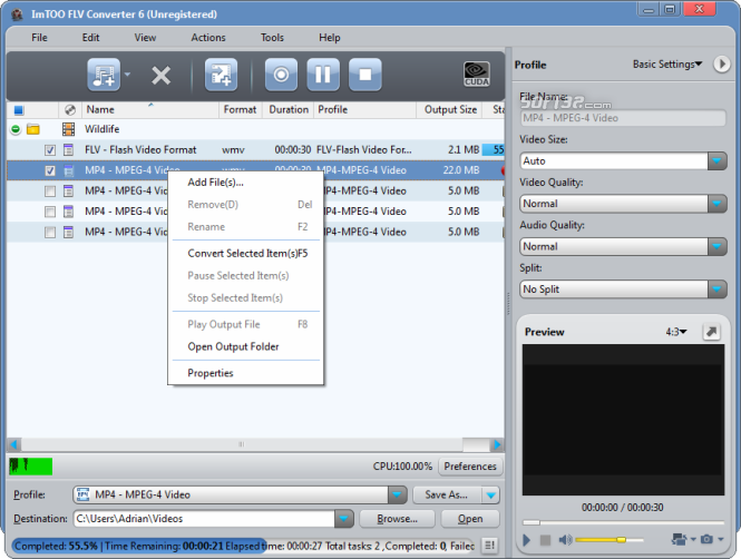 ImTOO FLV Converter Screenshot 6