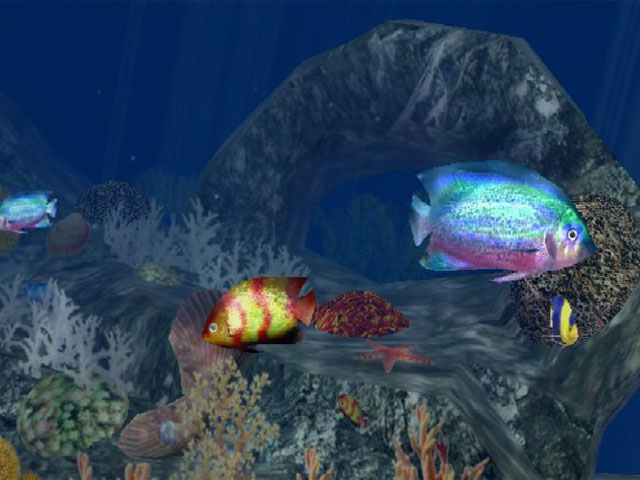 3D Aquatic Life Screensaver: Fish! Screenshot