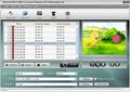 Nidesoft DVD to MP4 Converter Platinum 1