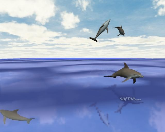 Desktop Dolphins 3D Screen Saver Screenshot