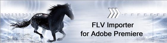 FLV Importer Pro for Adobe Premiere Pro Screenshot